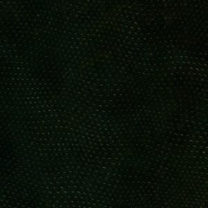 reptiles_texture829